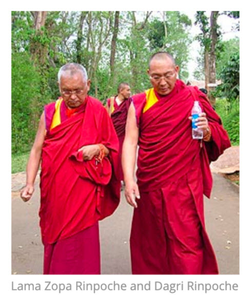 Lama Zopa Rinpoche is very close to Dagri Rinpoche. Dagri Rinpoche is said to be the number two man after Lama Zopa in FPMT. He is said to inherit the organization after Lama Zopa. FPMT has heavily promoted Dagri Rinpoche.